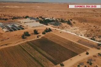 """România, te iubesc: """"Hrană din piatră seacă în Israel"""". Emisiunea integrală din 7 octombrie 2018"""