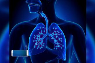 Efectele pe care fumatul și poluarea le au asupra plămânilor