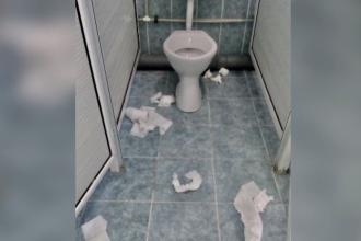 Fără săpun, hârtie şi dezinfectanţi. Toaletele din şcoli, sursă de infecţii