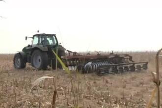 Secetă devastatoare în țară. Fermierii așteaptă ploi de mai bine de o lună și jumătate