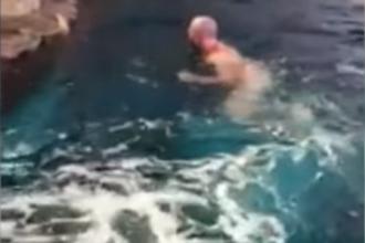 Bărbat dezbrăcat, surprins înotând gol în bazinul rechinilor. E căutat pentru agresiune. VIDEO