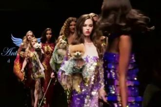 Căței îmbrăcați cu hăinuțe de lux, vedete la o prezentare de modă din Los Angeles