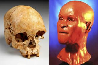 Una dintre cele mai importante fosile din lume, găsită în ruinele unui muzeu
