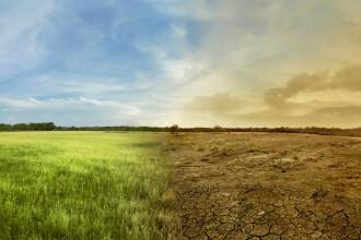 Prognoza neagră pentru zona mediteraneană: climă extremă, boli şi foamete