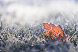 Cea mai scăzută temperatură din ţară: minus 4,2 grade. Unde s-a înregistrat