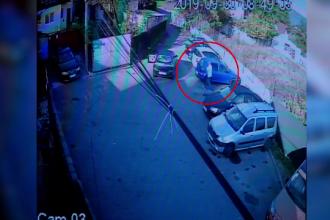 Acuzaţii grave în Braşov, după dispariţia motanului Grigoraş. Ce au văzut stăpânii pe camere