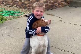 Pățania unui băiat de 6 ani. A dispărut de acasă timp de 10 ore, dar câinele a avut grijă de el