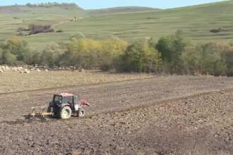 România, codașă la agricultura ecologică. Cum au rămas mulți fermieri fără certificate