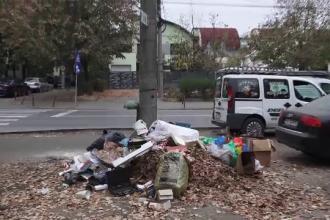 Amenzi uriașe pentru cei care aruncă gunoiul în stradă. Cum sunt descoperiţi de autorităţi