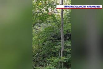 O femeie din Maramureș a fost găsită decedată, la câțiva metri de casă. Familia o dăduse dispărută