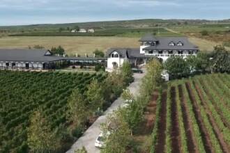 """Turismul viticol, una dintre cele mai plăcute experiențe în România: """"E o stare de liniște"""""""