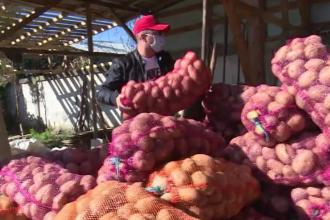 Gest impresionant al unor fermieri din Dâmbovița, care și-au donat o parte din recoltă