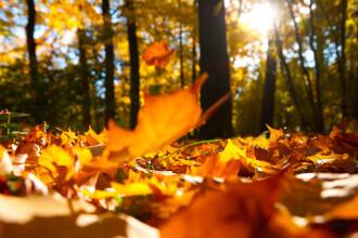 Vremea azi, 23 octombrie 2020. Prognoza meteo în București și în țară