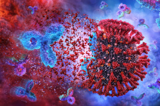 Studiu: Copiii cu vârste sub 10 ani produc mai mulţi anticorpi împotriva COVID-19