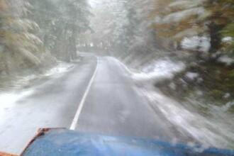 VIDEO. Lapoviţă şi ninsoare în Harghita. Drumarii au intervenit pe cinci drumuri naţionale