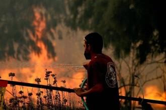 Autoritățile din Siria au executat 24 de persoane acuzate de provocarea incendiilor devastatoare din 2020
