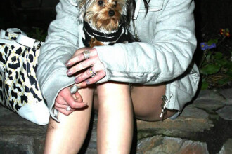 Lui Britney i s-a impus abstinenta sexuala!