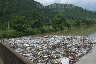 Cosuri de gunoi ecologice pe malurile Crisului Repede
