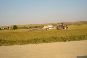 Agricultura este vedeta lui 2009. Firmele apar ca ciupercile