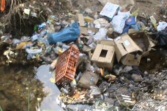 Muntii Dognecei plini de gunoaie! Turistii nu dau doi bani pe ecologie