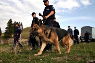 O tanara de 16 ani din Bihor a disparut fara urma. Familia si politistii o cauta fara incetare