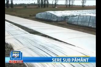 Idee ingenioasa adusa de chinezi in Romania. Cum poti produce legume si iarna, fara curent sau gaz