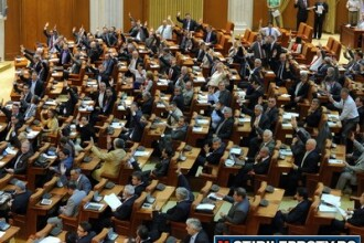 Iar s-au certat in Parlament. Votul la legea cainilor fara stapan a fost amanat pentru 2 saptamani