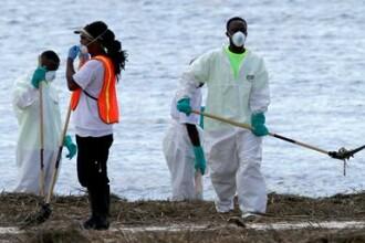 Aparitia socanta pe plajele din SUA, dupa uraganul Isaac. FOTO