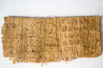 Papirusul care sugereaza ca Iisus ar fi fost casatorit naste inca dezbateri. Ce sustine Vaticanul