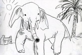 Elefantica Tania isi asteapta vizitatorii la cea mai mare gradina zoologica din Romania