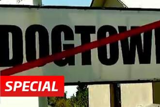 Afacerea Dog Town. Legatura dintre fondatorii celui mai mare oras de caini si Sorin Oprescu