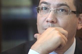 Ponta: Saptamana viitoare Parlamentul trebuie sa ia decizia privind cainii fara stapan