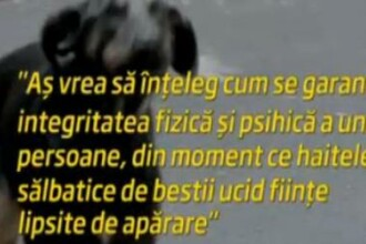 Primele cuvinte ale mamei lui Ionut dupa ce si-a inmormantat fiul de 4 ani ucis de cainii vagabonzi
