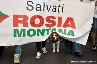 Aproximativ 500 de persoane protesteaza la Rosia Montana, cerand inceperea proiectului minier