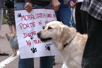 Protest impotriva eutanasierii. Iubitorii de animale cer sterilizarea cainilor si nu uciderea lor