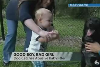 Un catel din SUA l-a salvat pe un bebelus care era abuzat. Cum a demascat-o pe bona care il maltrata