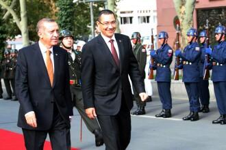 Guvernul estimeaza ca in curand va putea fi reluat exportul in Turcia de carne de oaie