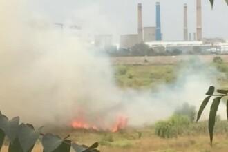 Un nou incendiu de vegetatie in Delta Vacaresti. Pompierii au intervenit cu sase autospeciale