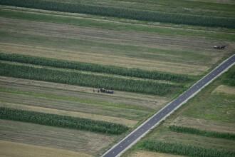 Coreea de Sud, Germania sau Ungaria cumpara, mai nou, din Romania. Culturile de soia, la mare cautare in randul strainilor