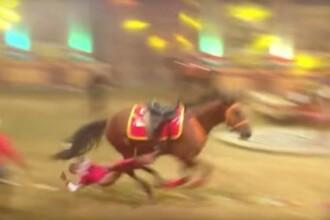 Imagini cutremuratoare. Momentul in care o acrobata este lovita si ucisa de calul ei, in timpul unui spectacol. VIDEO