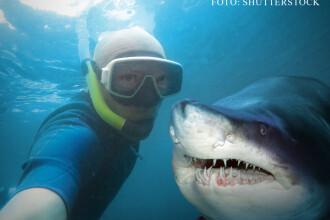 Mai multi oameni au murit in 2015 din cauza selfie-urilor decat a rechinilor. Masura luata de Rusia
