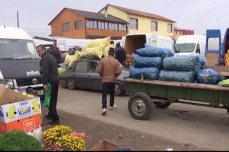 Recolta bogata a scazut pretul legumelor, dar agricultorii sunt nevoiti sa arunce tone intregi.