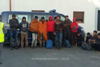 14 migranti, intre care 8 adolescenti, prinsi la frontiera Romaniei cu Serbia. Unde voiau sa ajunga de fapt