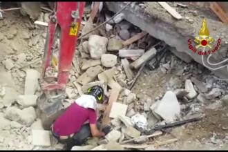 Pisica salvata de sub daramaturi la 16 zile de la cutremurul din Italia. Ce a facut imediat ce a fost luata in brate