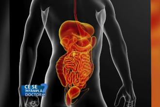 Ce se intampla atunci cand, dupa o cura de antibiotice, scade drastic numarul de bacterii din intestin. Rolul probioticelor