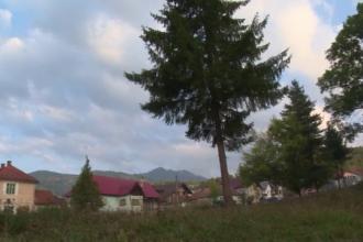 Statiunea din Romania lasata in paragina, dar care ascunde o adevarata bogatie. Ce descopera aici turistii