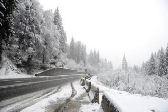 Stratul de zapada cazut in zonele montane din Maramures a depasit 20 cm si continua sa ninga