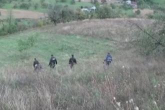 Sute de plante de canabis, descoperite de politistii antidrog din Cluj. Cine le cultiva