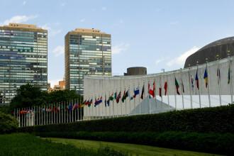 Ţara declarată de ONU