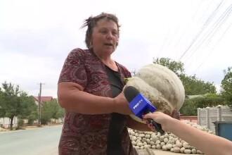 """Au luat fonduri europene și și-au transformat satul în """"capitala dovlecilor"""""""